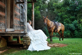 Equestrian Themed Trash The Dress