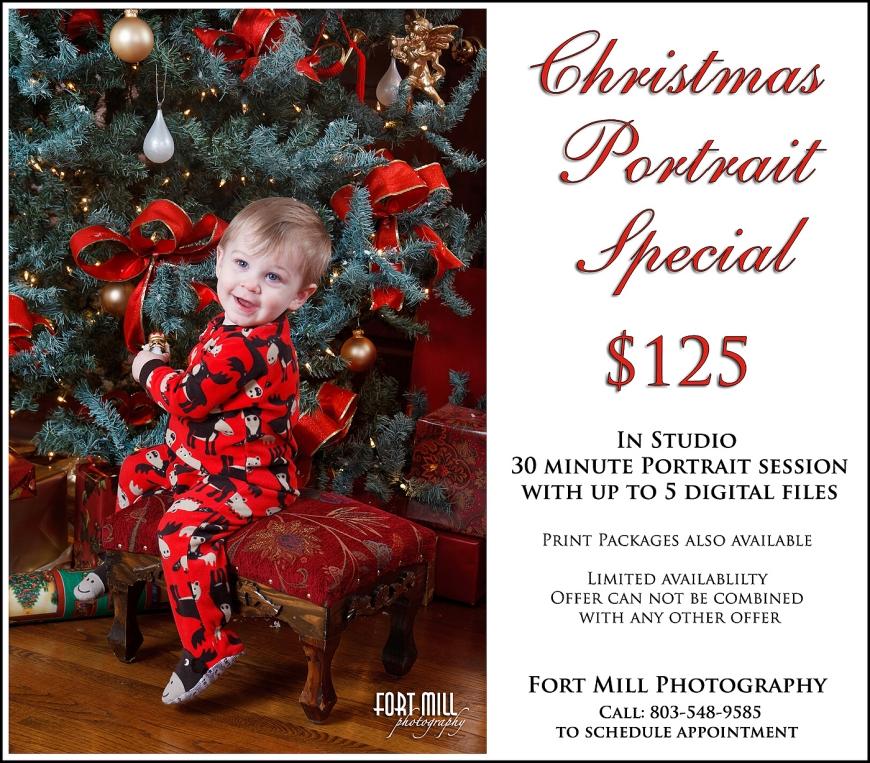 Christmas Portrait Special