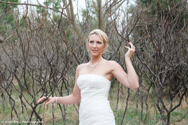 Bridal in Stick Trees