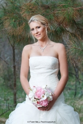Winter Bridal In The Pines