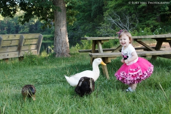 Toddler and Ducks