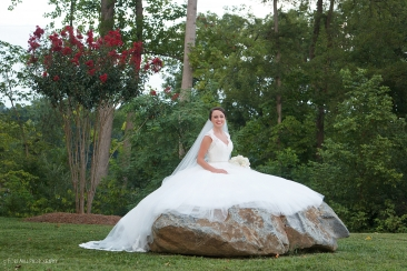 Bridal on rock